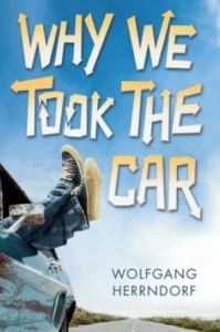 Why We Took the Car Book Cover